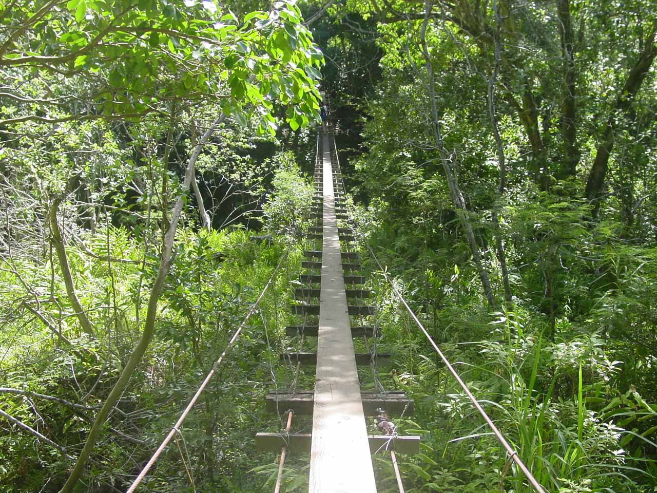 The 2nd Swinging Bridge
