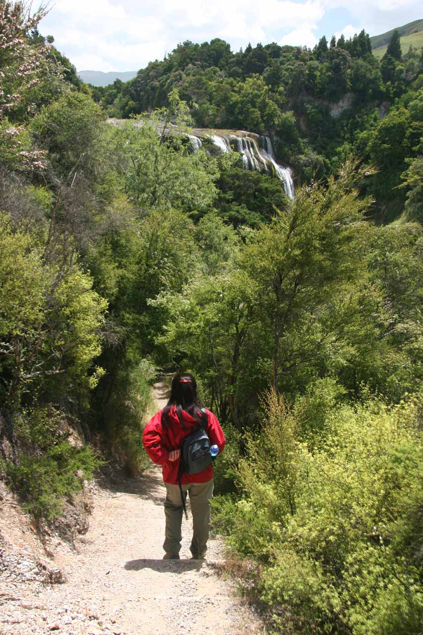 Julie approaching the base of Waihi Falls as the track was surprisingly slippery towards the end