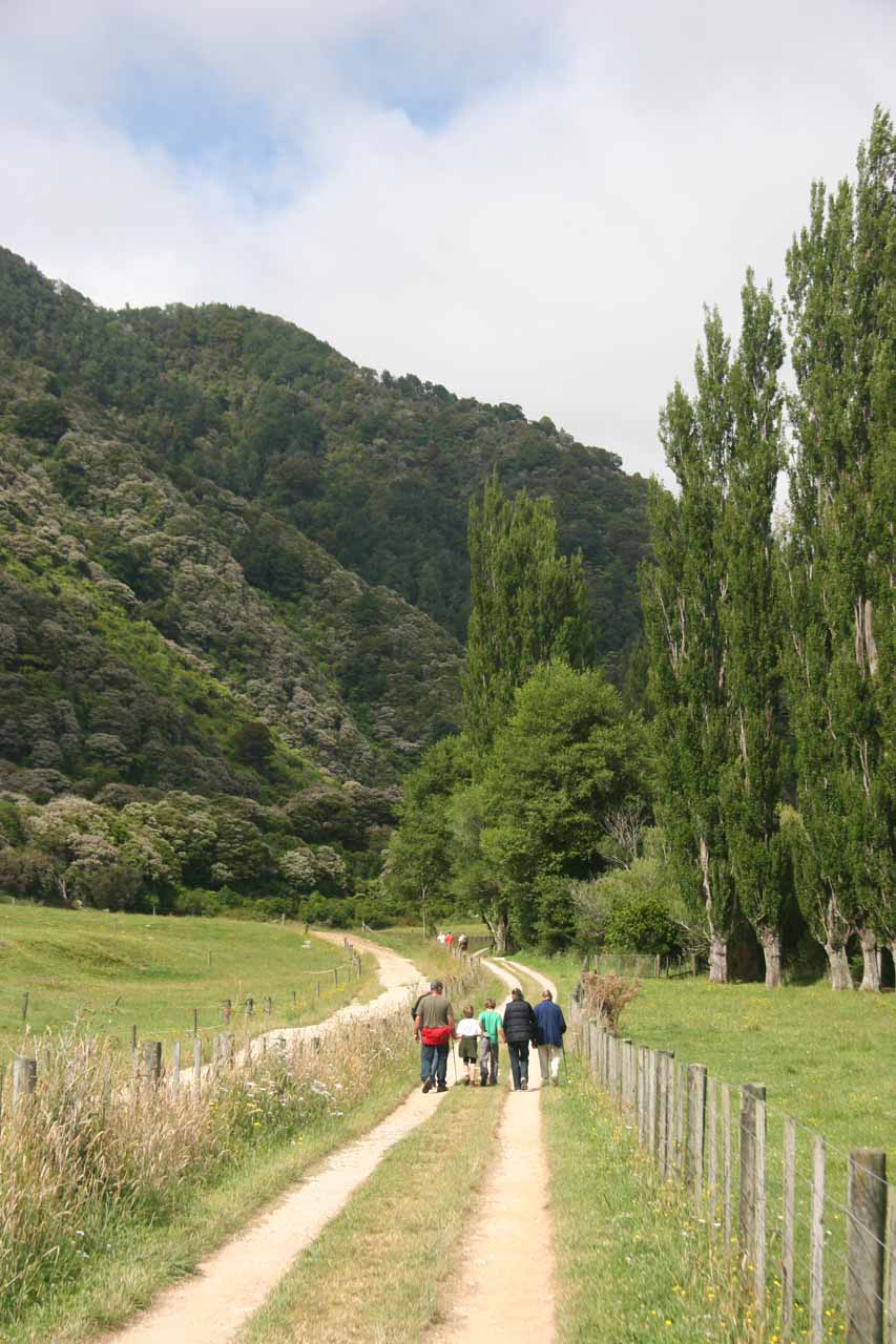Walking along the road to get to the actual trailhead for Wainui Falls
