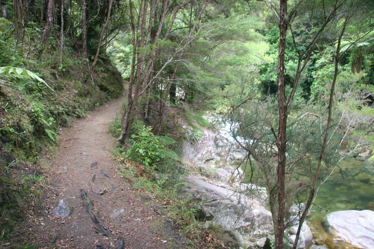 The track followed along the Wainui Stream