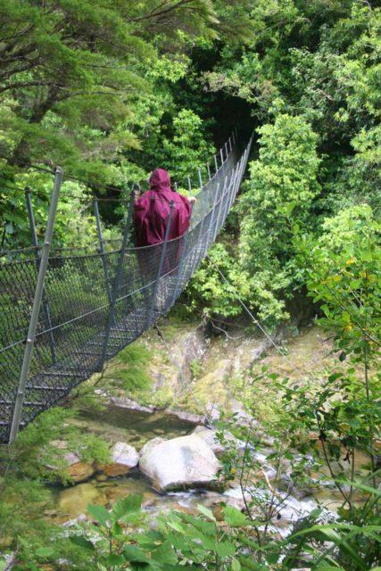 Wainui_Falls_019_01012010 - Julie walking across a narrow chain-linked swinging bridge en route to Wainui Falls