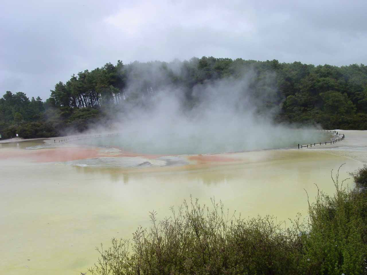 A little further to the south of Rotorua was the Wai-o-tapu Thermal Park, whose main two features were the Lady Knox Geyser and the Champagne Pool (shown here)