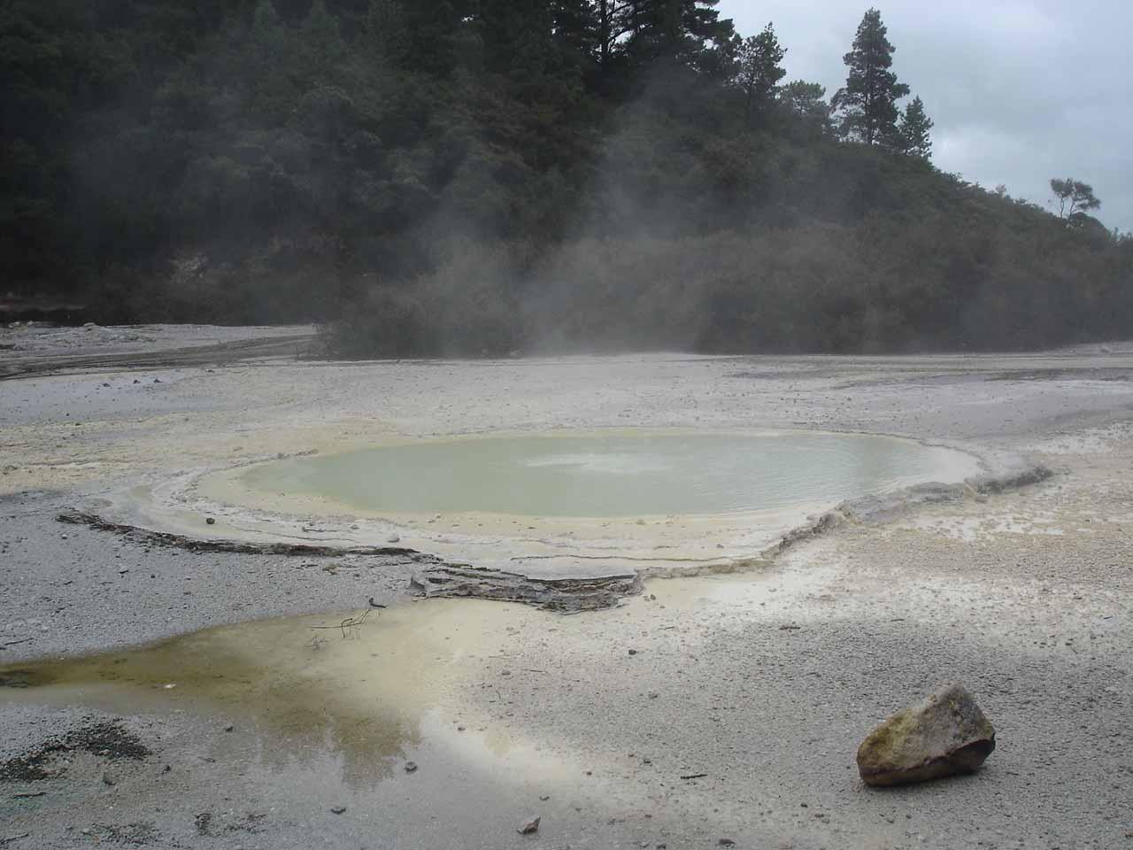 More thermal pools and springs in Wai-o-tapu