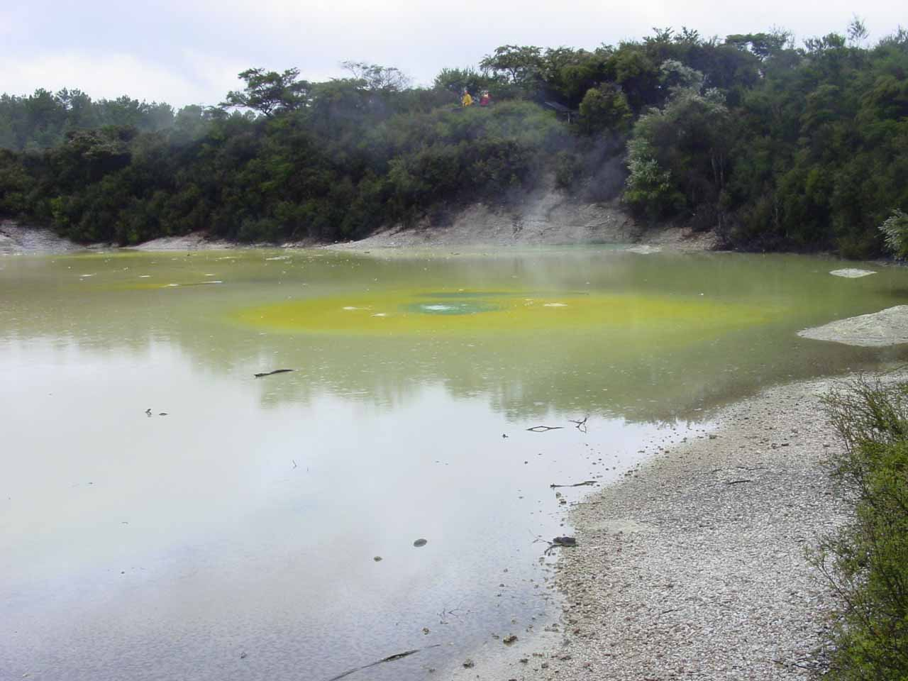 A deceptively calm yet strikingly colorful pool in Wai-o-tapu