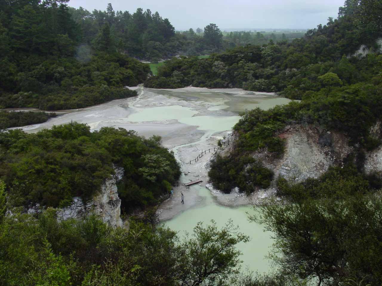 Contextual view back towards the thermal wonderland of Wai-o-tapu despite the rain