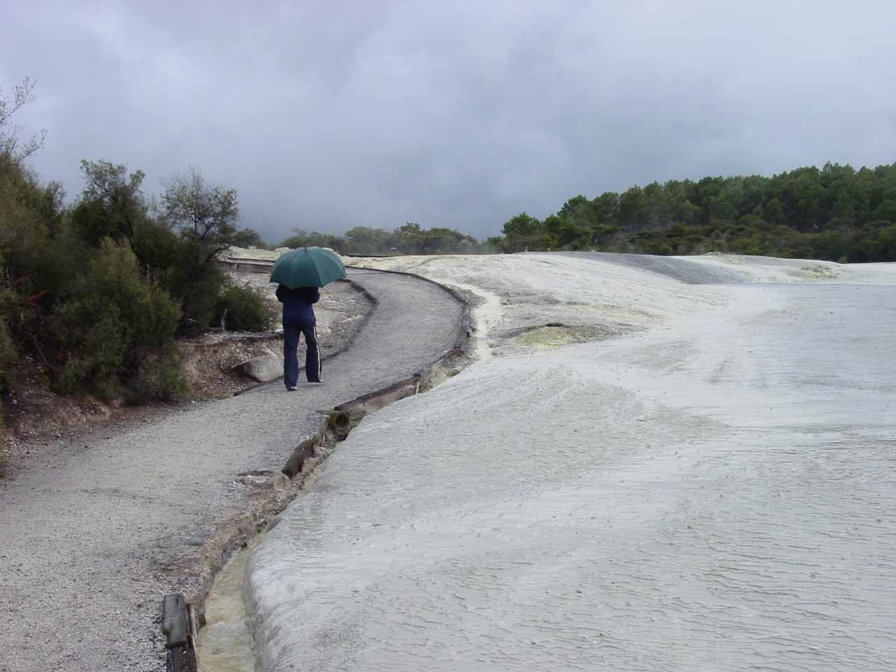 Quickly making our way across the thermal wonderland towards Lady Knox Geyser