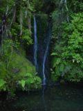Waiotemarama_Falls_001_11072004 - First look at some small waterfall en route to Waiotemarama Falls