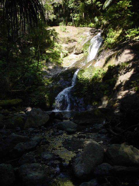 Waiotemarama_Falls_011_11072004 - Waiotemarama Falls