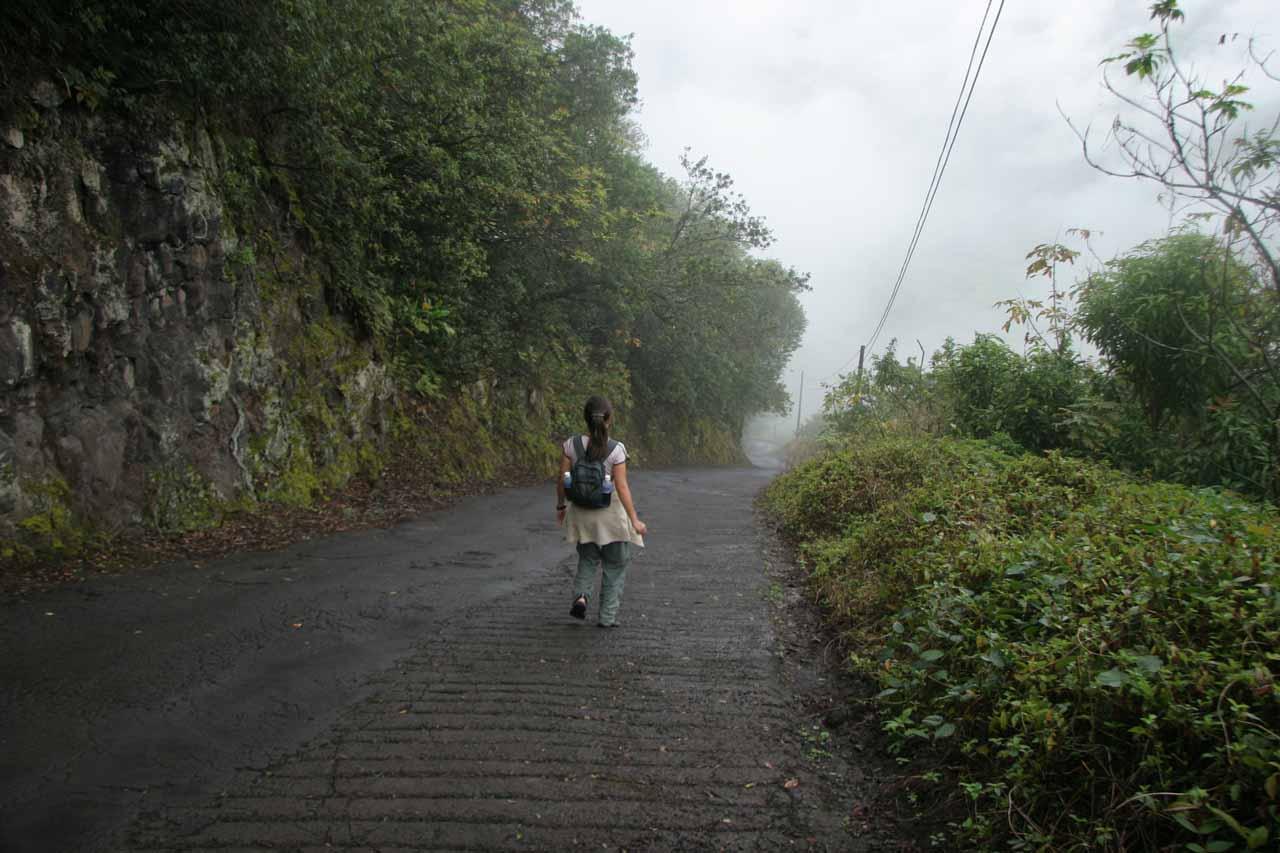 Julie descending into Waipi'o Valley on a foggy morning