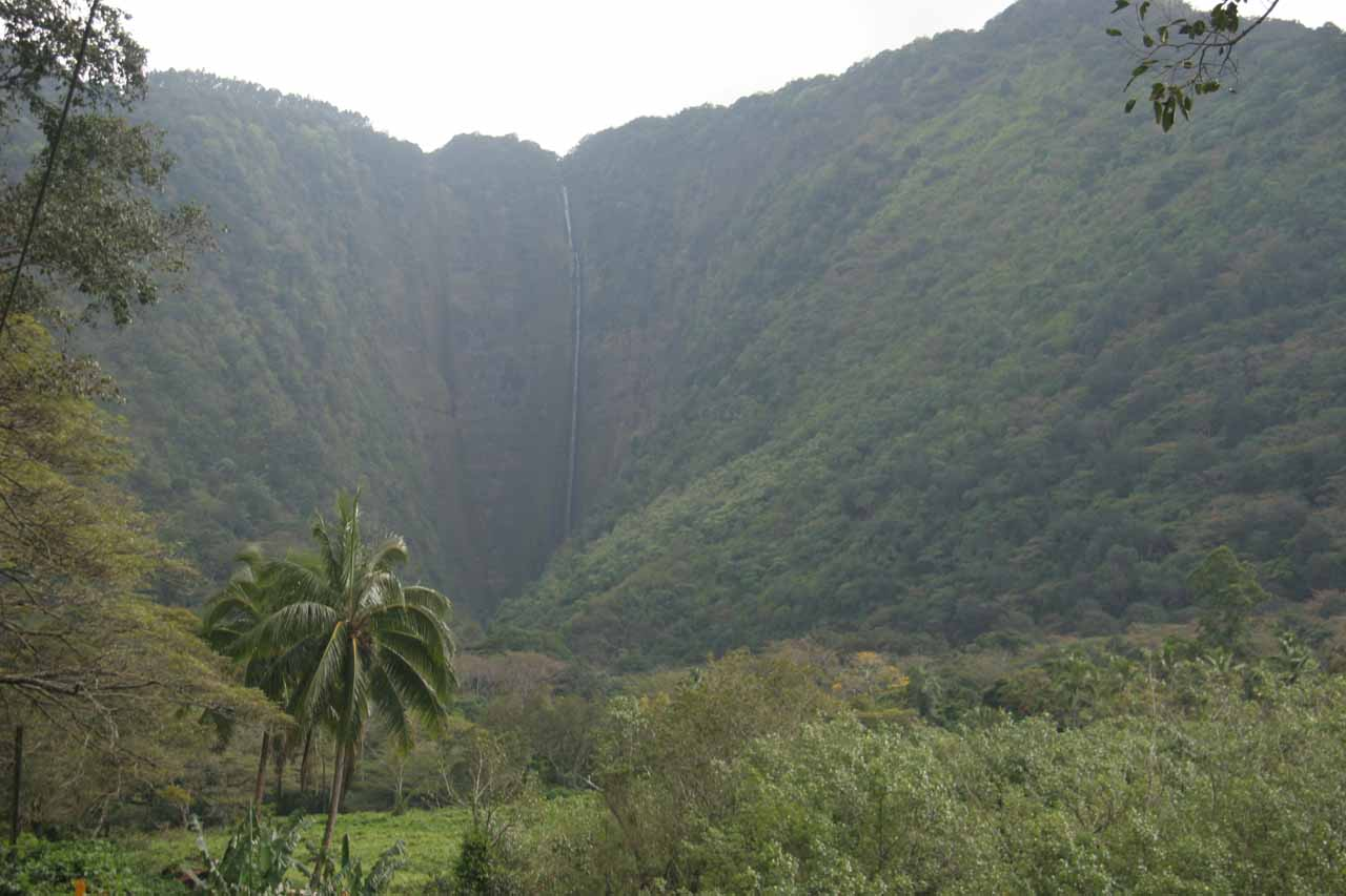 Context of Hi'ilawe Falls as shot by our van driver