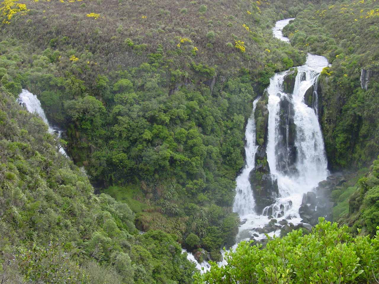 A North Island Waterfall