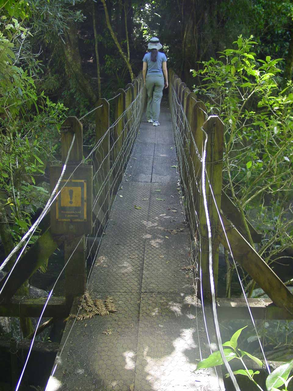 Julie crossing over one of the swinging bridges on the way to Wairere Falls
