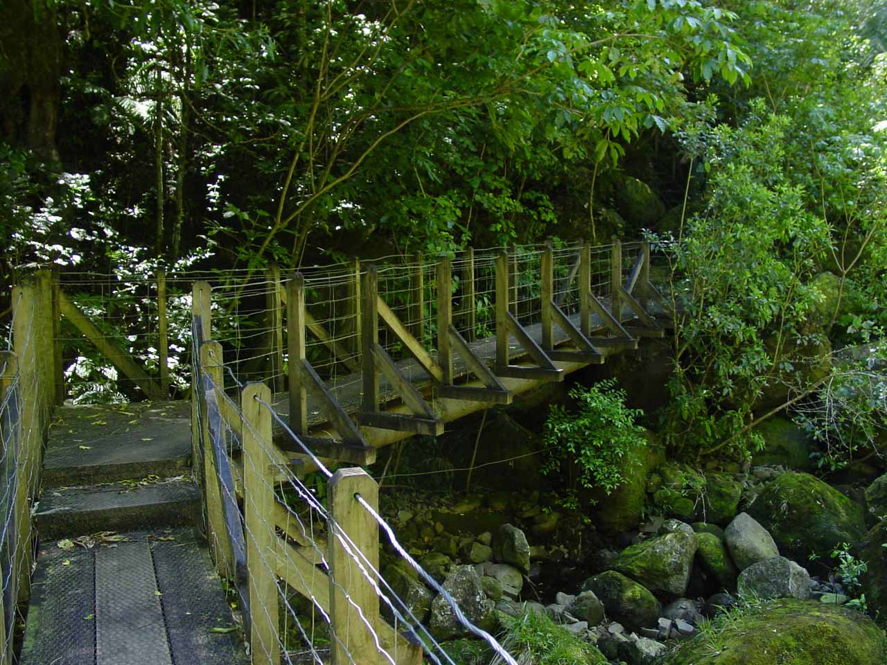 One of many bridges we had to cross on our way up to Wairere Falls