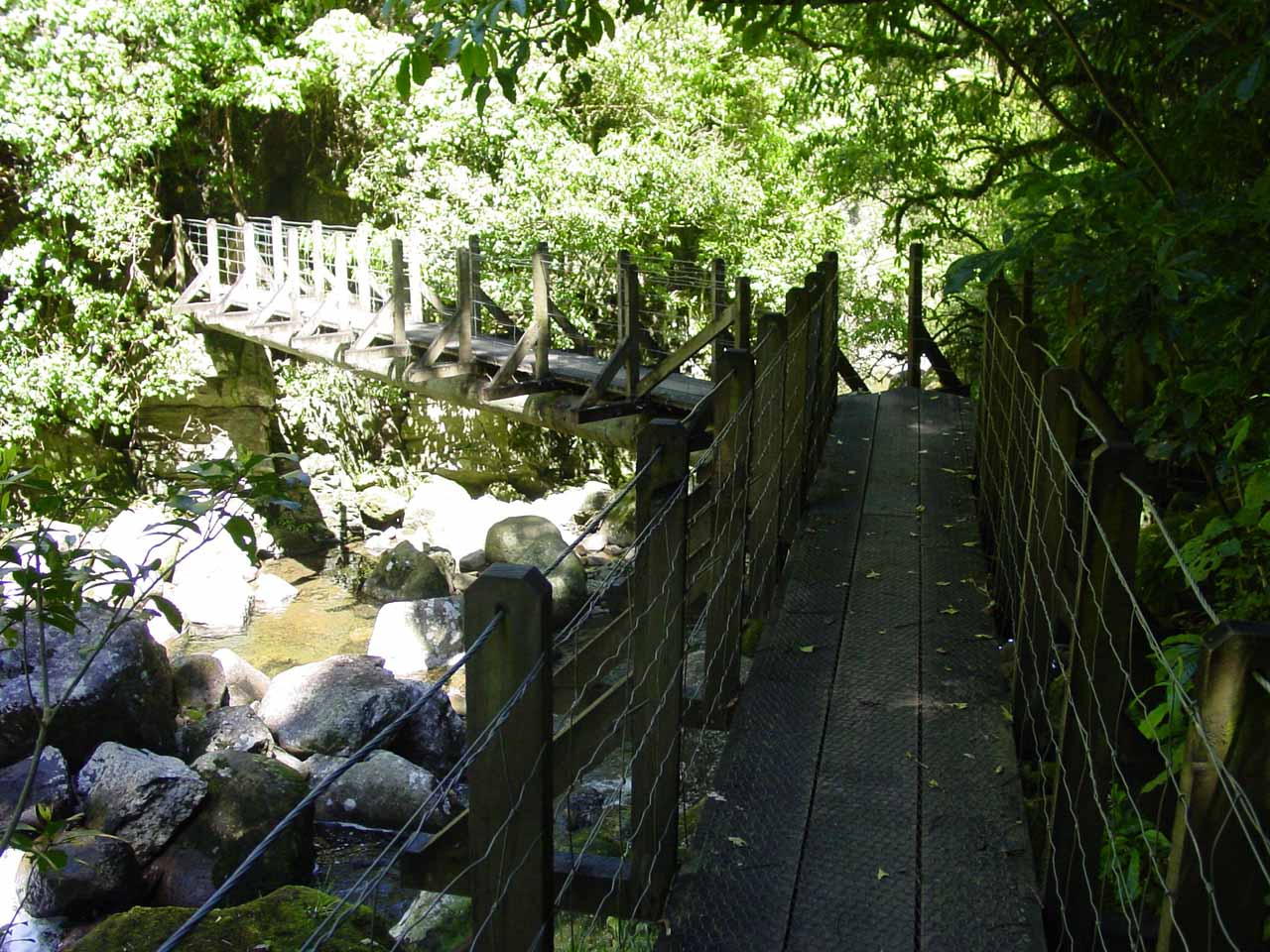 Looking back at another one of the bridges over the Wairere Stream