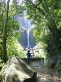 Wairere_Falls_012_11122004