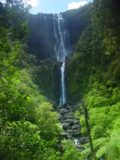 Wairere_Falls_015_11122004