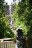 Wairere_Falls_032_01072010