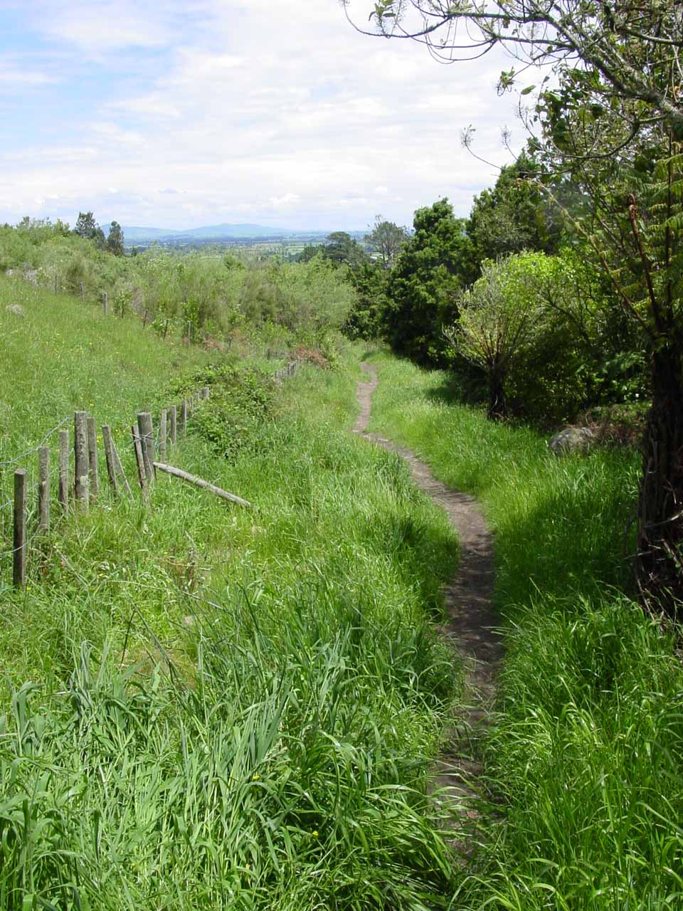 Following the fringes of farmland towards the trailhead of Wairere Falls