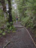 Waitonga_Falls_005_11162004 - Julie on the Waitonga Falls Track