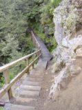 Waitonga_Falls_006_11162004 - Hiking along some interesting terrain on the Waitonga Falls Track