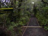 Waitonga_Falls_008_11162004