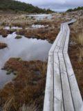 Waitonga_Falls_018_11162004 - Continuing further along the scenic bog on the Waitonga Falls Track