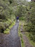 Waitonga_Falls_024_11162004 - Julie now beyond the scenic bog and descending the gently sloping elongated steps of a pair of switchbacks as we were getting quite close to Waitonga Falls
