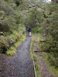Waitonga_Falls_024_11162004 - On the Waitonga Falls Track beyond the scenic bog