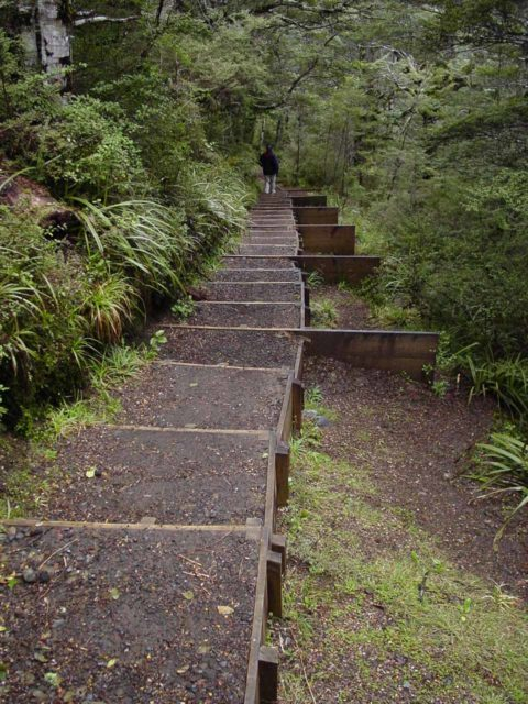 Waitonga_Falls_026_11162004 - Julie descending a section of elongated steps among the switchbacks where we were getting near the Waitonga Falls