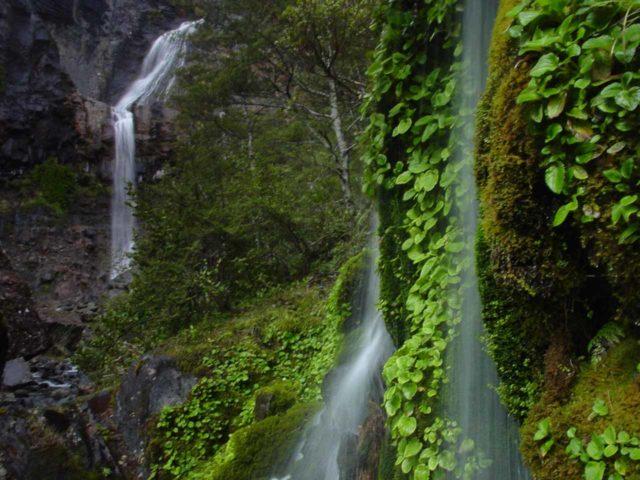 Waitonga_Falls_059_11162004