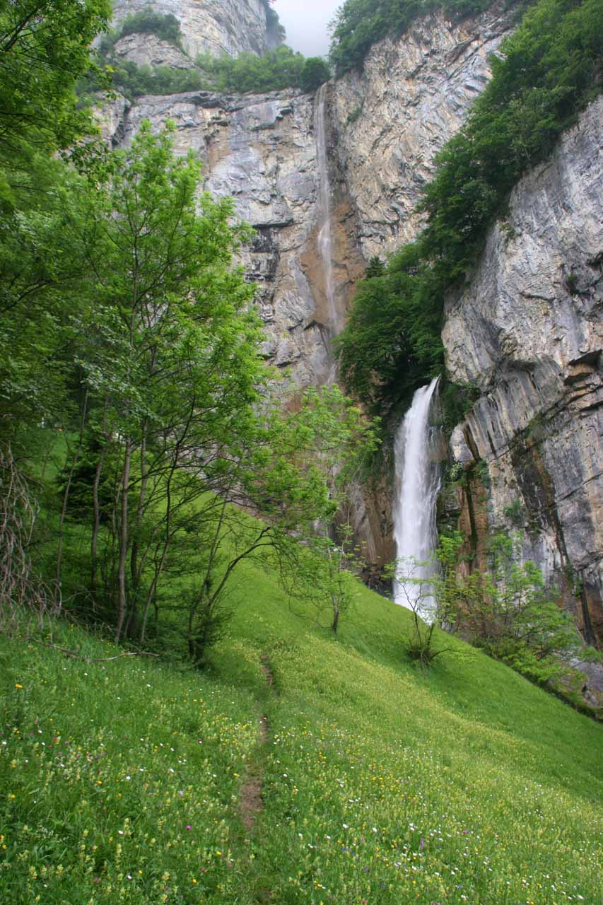 The narrow footpath flanked by pretty wildflowers leading to the base of Rinquelle and Seerenbach Falls