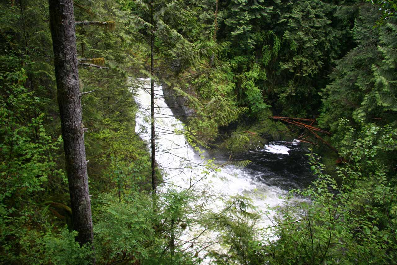 This was what the Lower Wallace Falls looked like in a rain-swollen state back on my first visit in 2006
