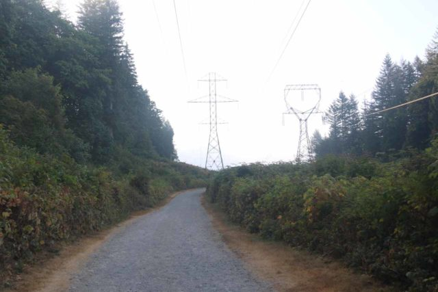Wallace_Falls_17_015_07292017 - The beginning of the Wallace Falls Trail went beneath power pylons and power lines
