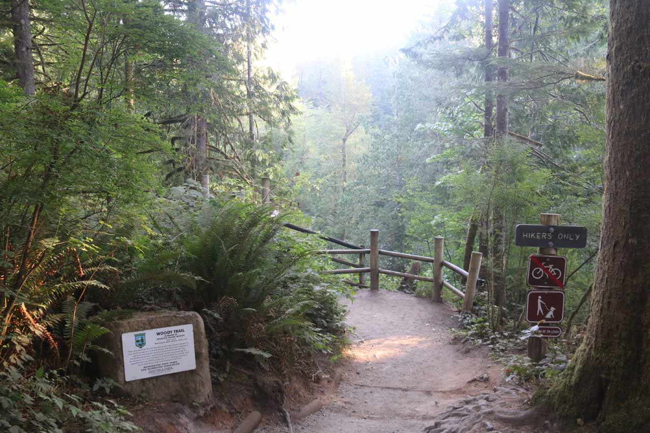 This trail junction was where the trail split into the Railroad Grade on the left and the Woody Trail on the right