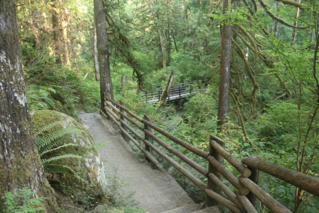 Wallace_Falls_17_032_07292017 - The Woody Trail descending towards a bridge over the North Fork Wallace River in a well-forested setting en route to the Wallace Falls
