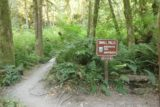 Wallace_Falls_17_033_07292017 - A signposted spur trail leading to the Small Falls Interpretive Trail, which was dry during my visit in July 2017