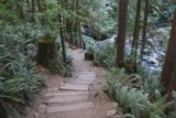 Wallace_Falls_17_054_07292017 - Descending on the spur trail leading to the Lower Wallace Falls during my July 2017 hike