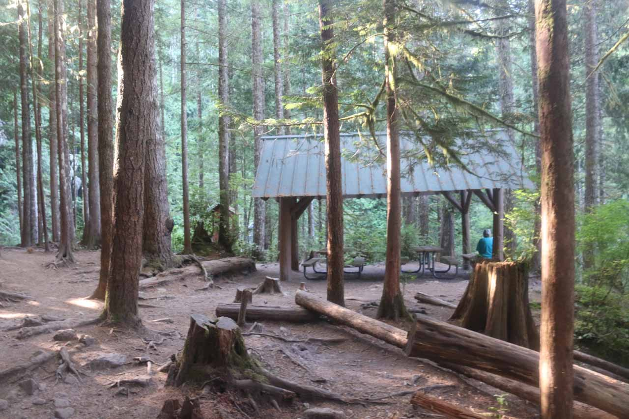 Looking towards the picnic shelter above the Lower Wallace Falls