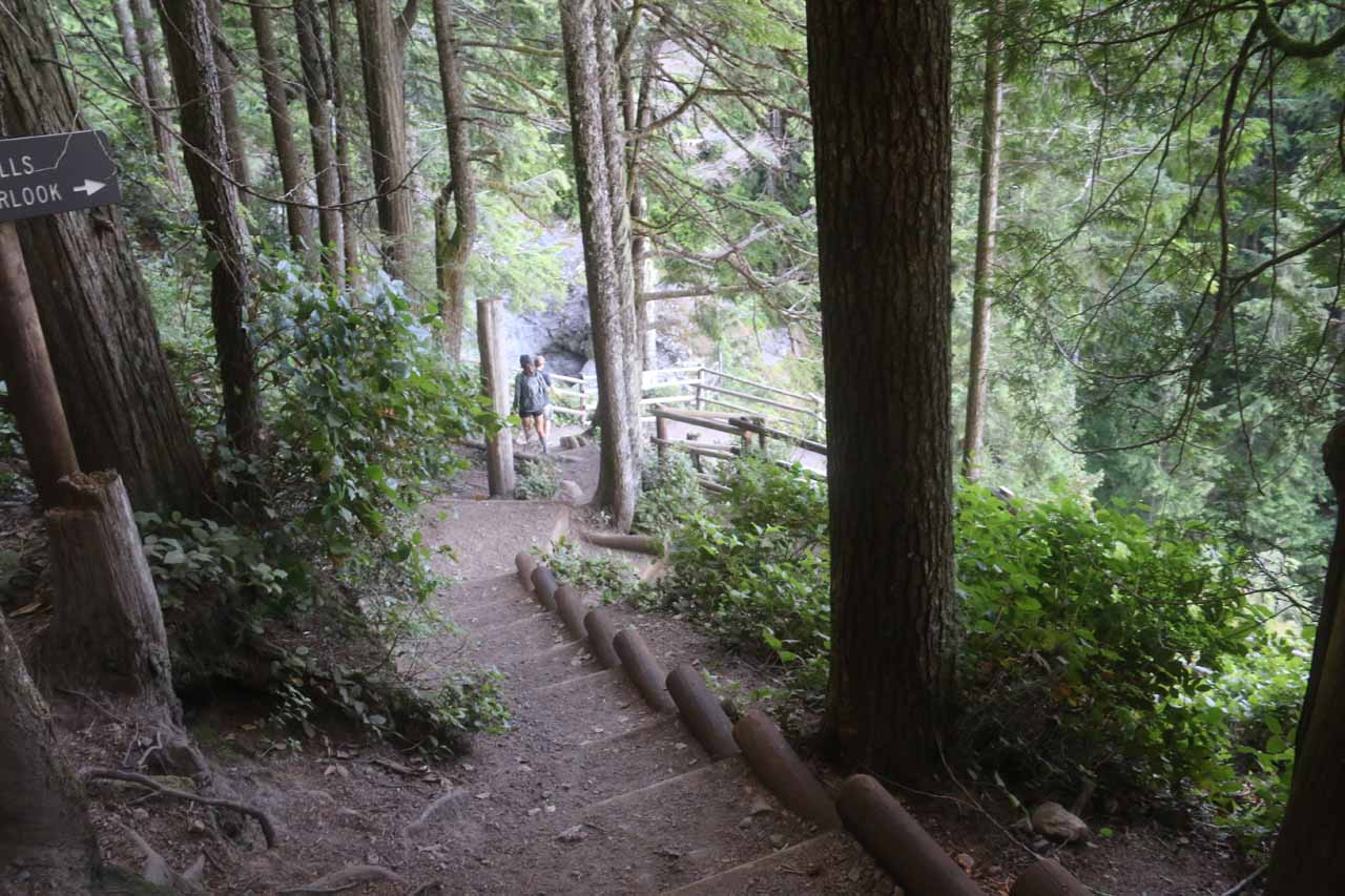 This was the signposted fork where the spur trail on the right led to the very brink of the Middle Wallace Falls and the Valley Overlook