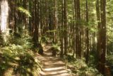 Wallace_Falls_17_118_07292017 - Continuing on the long ascent beyond the Middle Wallace Falls towards the Upper Wallace Falls on my July 2017 hike