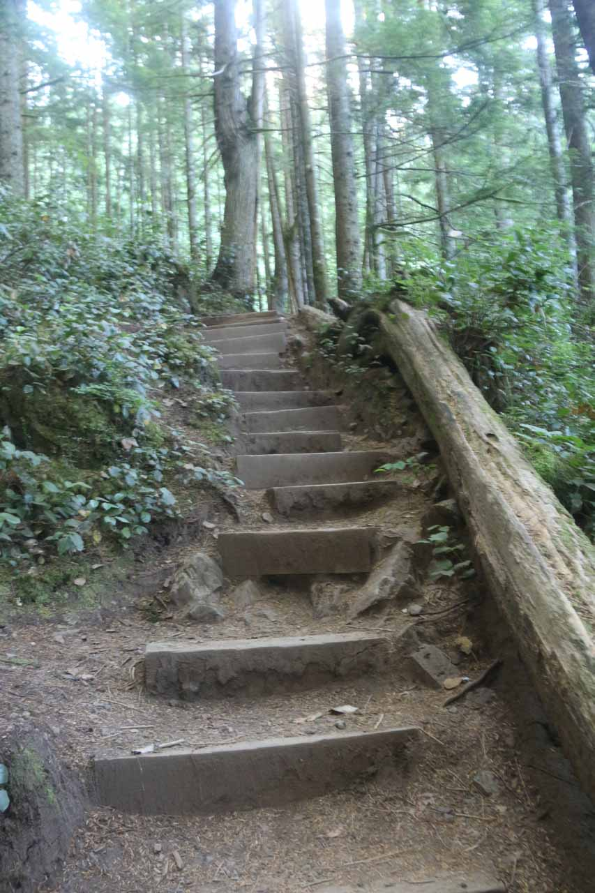 Some steps leading up towards the viewing area for the Upper Wallace Falls