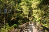 Wallace_Falls_17_143_07292017 - Going back across the bridge over the North Fork Wallace River on the return hike in July 2017
