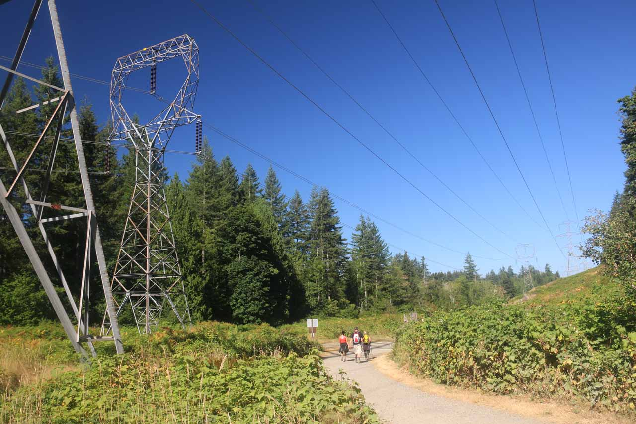 Making it back to the power lines