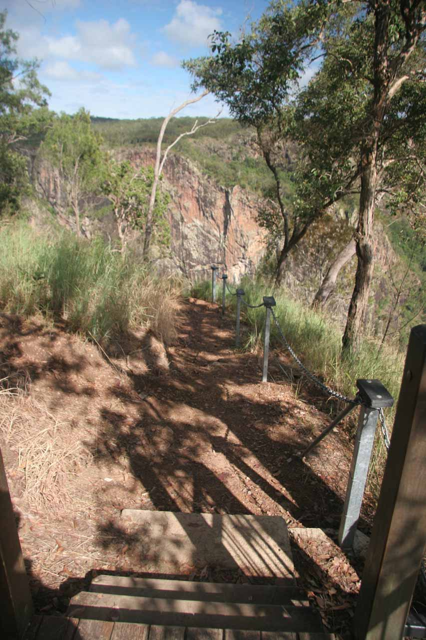 The walking track started descending on a combination of steps and dirt, but notice how grassy and dry the vegetation looked up here