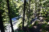 Walupt_Falls_027_06212021 - Context of the faint use trail for Walupt Falls alongside Walupt Creek