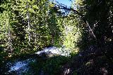 Walupt_Falls_038_06212021 - Looking downstream along Walupt Creek en route to Walupt Falls