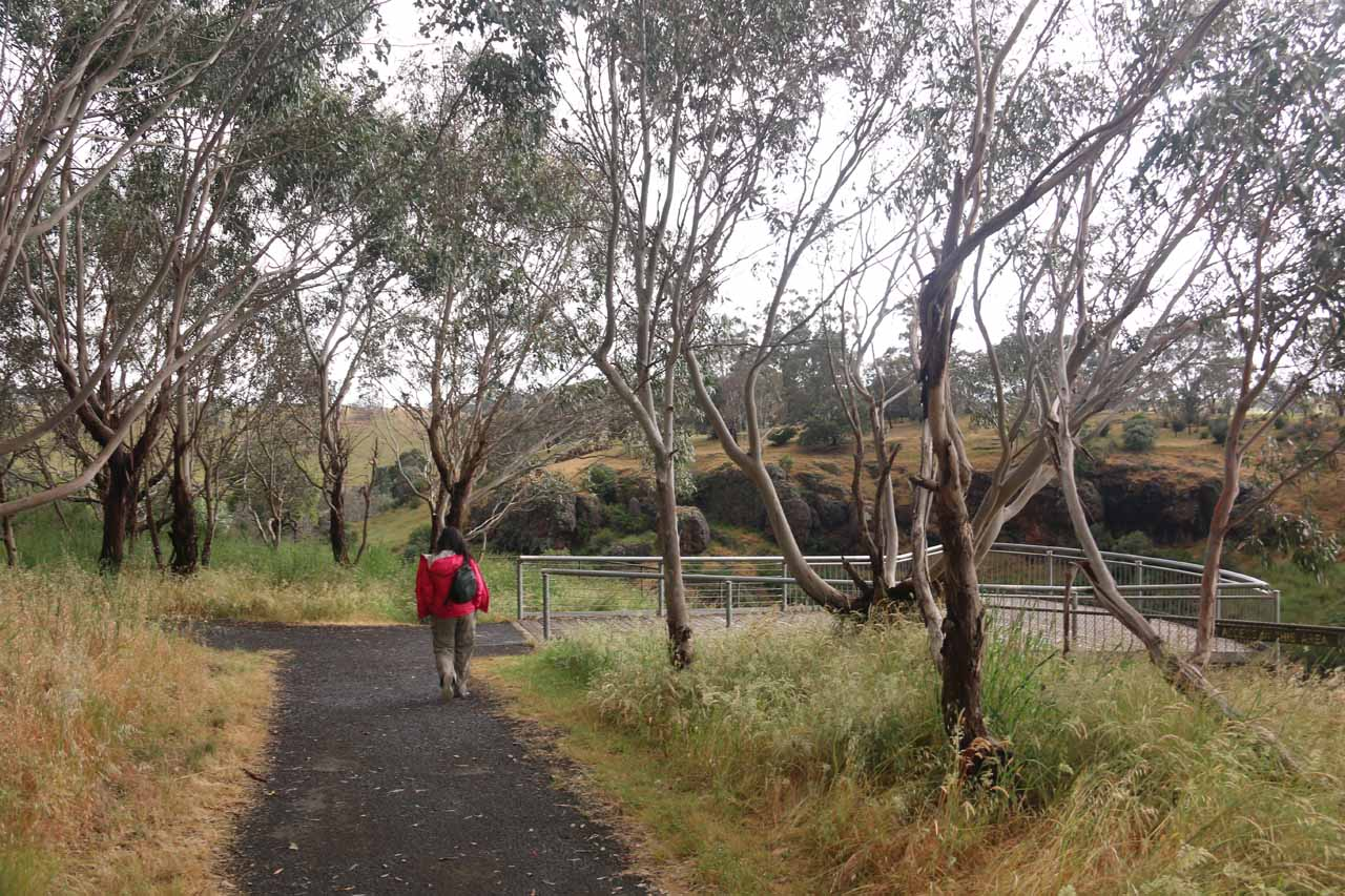 Julie approaching the overlook of Wannon Falls