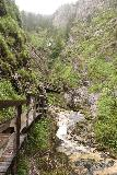 Wasserlochklamm_086_07062018 - Context of the boardwalk trail as it followed alongside more intermediate cascades in the Wasserlochklamm somewhere between the second and third signed waterfalls