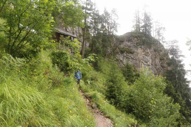 Wasserlochklamm_165_07062018 - The trail ascending to a shetler by the Wasserlochklamm, where there was a natural bridge as well as a spring