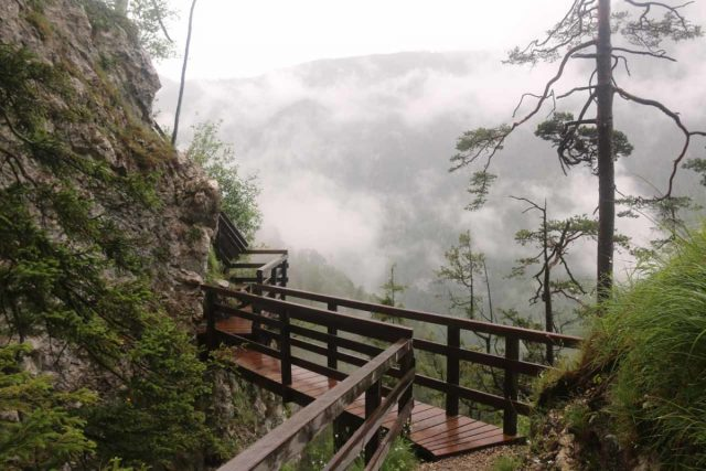Wasserlochklamm_169_07062018 - Crossing over a bridge above the natural bridge (unseen) on the way up to the Salzatalblick (overlook of the Salzatal Valley)